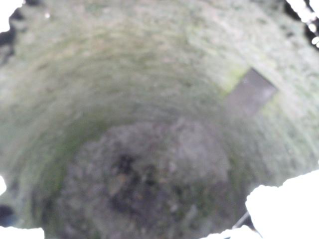 Pou del Gel (Puits à neige, ou puits à glace) de Roca Roja
