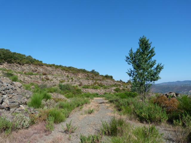 Carrière de Schistes - Dit schistes de Serrabone