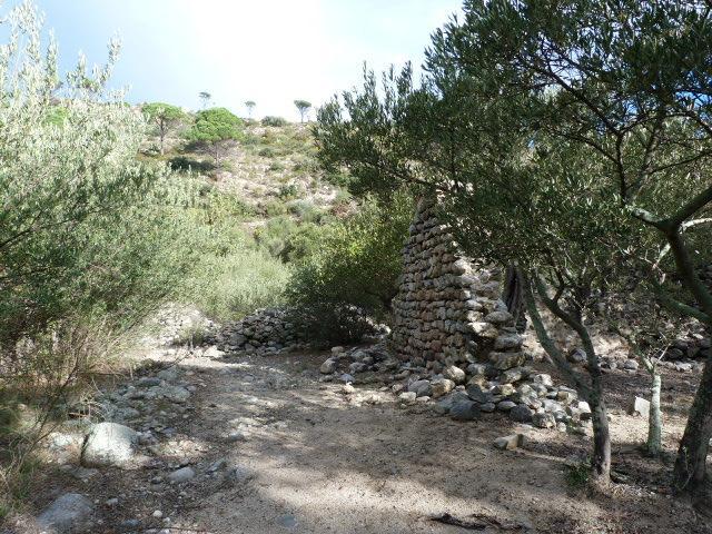 Ruines de Casenoves