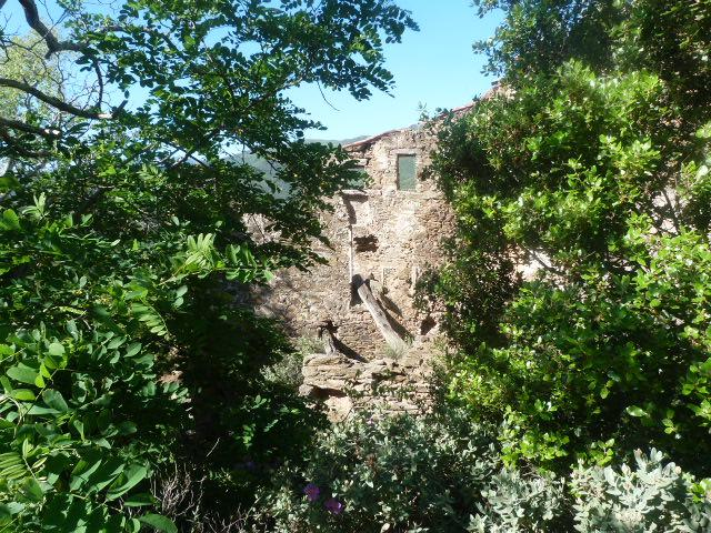 Ruines du Bon Moussou